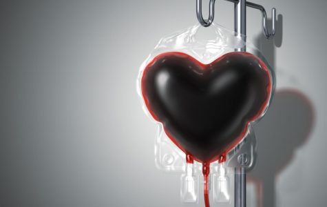 Bi-Annual Blood Drive Succeeds In Saving Hundreds of Lives