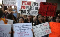 Students Lead National Movement to End Gun Violence