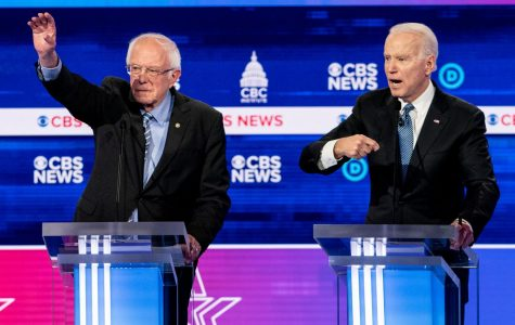 Senator Bernie Sanders (left) and former Vice President Joe Biden are the remaining major candidates in the Democratic presidential race.
